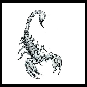 scorpio women traits profile more scorpio tattoos scorpio clipart