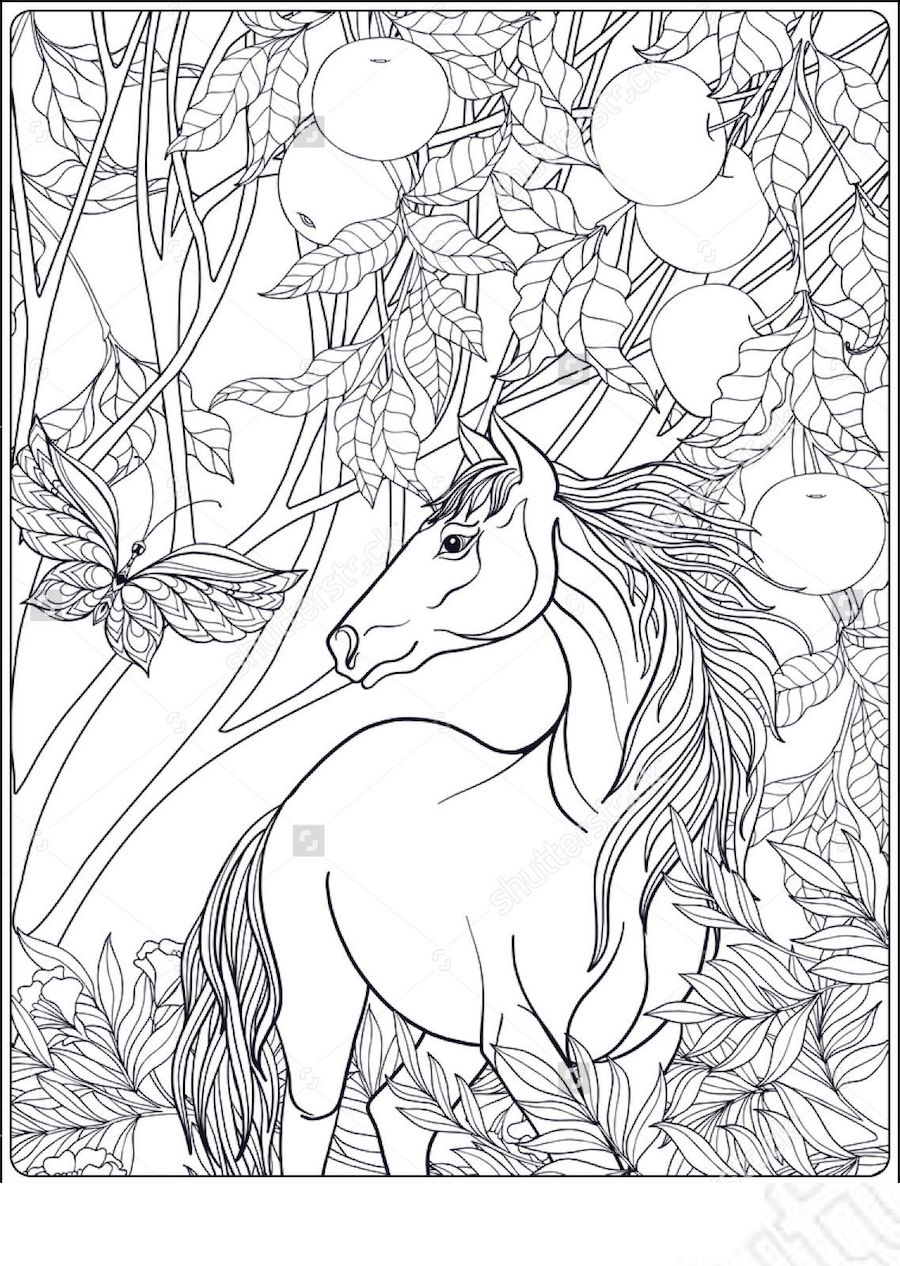 Aesthetic Coloring Pages And Other Top 10 Themed Coloring Challenges