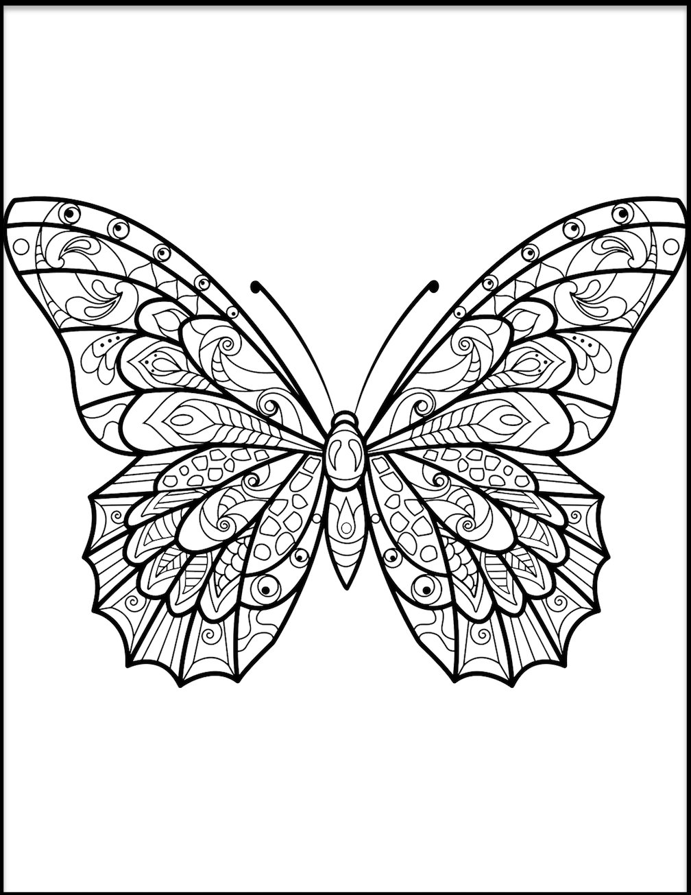 Butterfly Coloring Pages And Other Free Printable Coloring ...