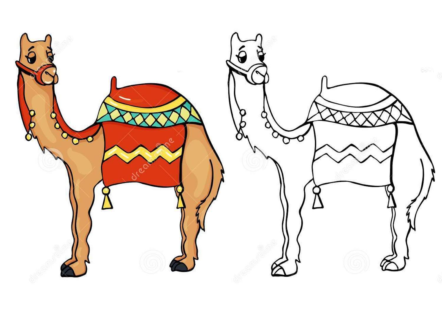 Camel clipart colouring page, Camel colouring page Transparent ... | 1104x1500