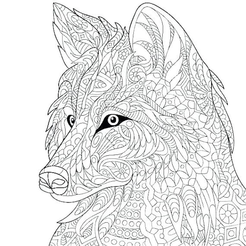 Wild Dog Coloring Pages And Other Free Printable Coloring Themes