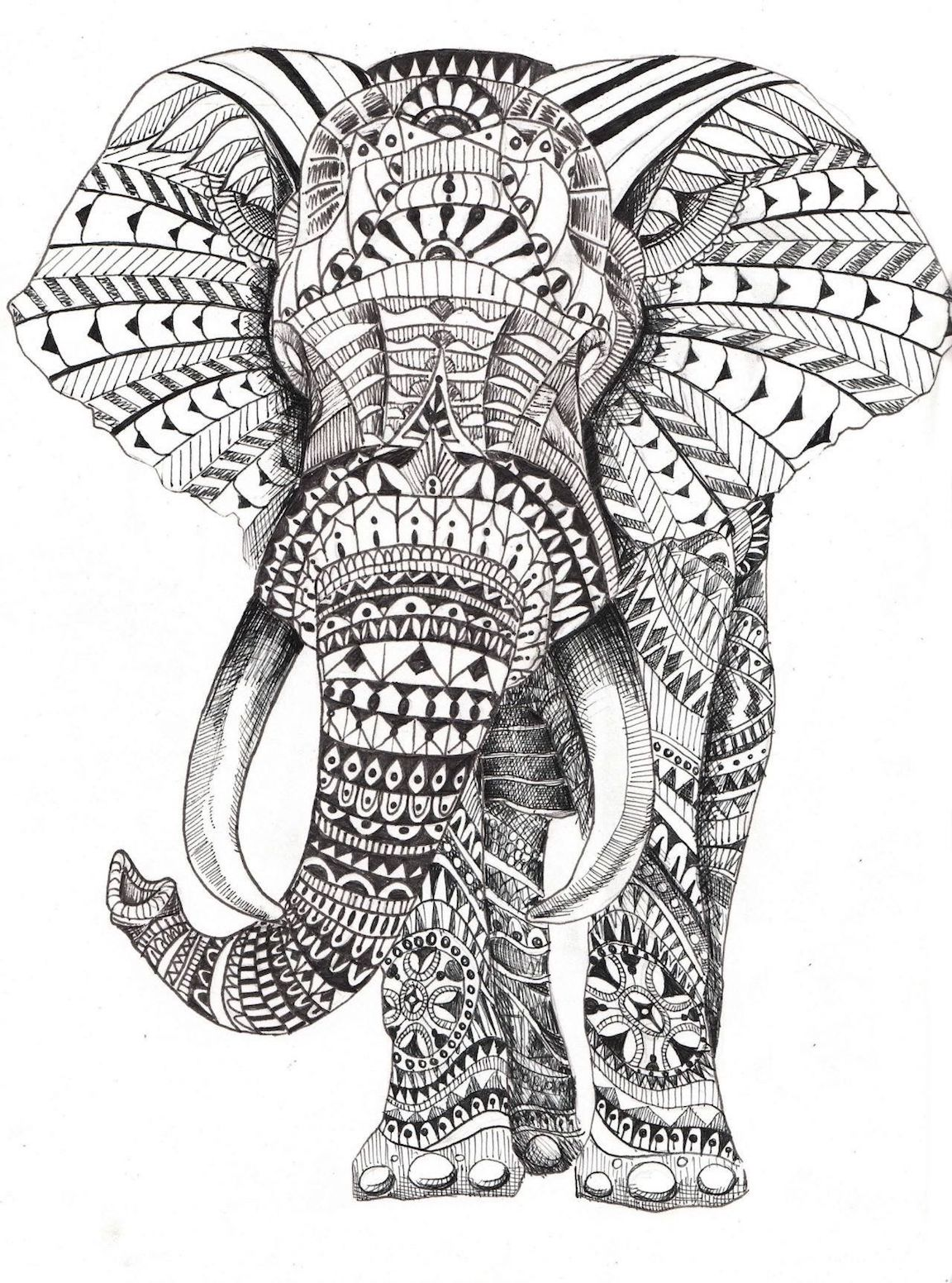 Elephant Clipart Coloring Pages And Dozens More Top 10 ...