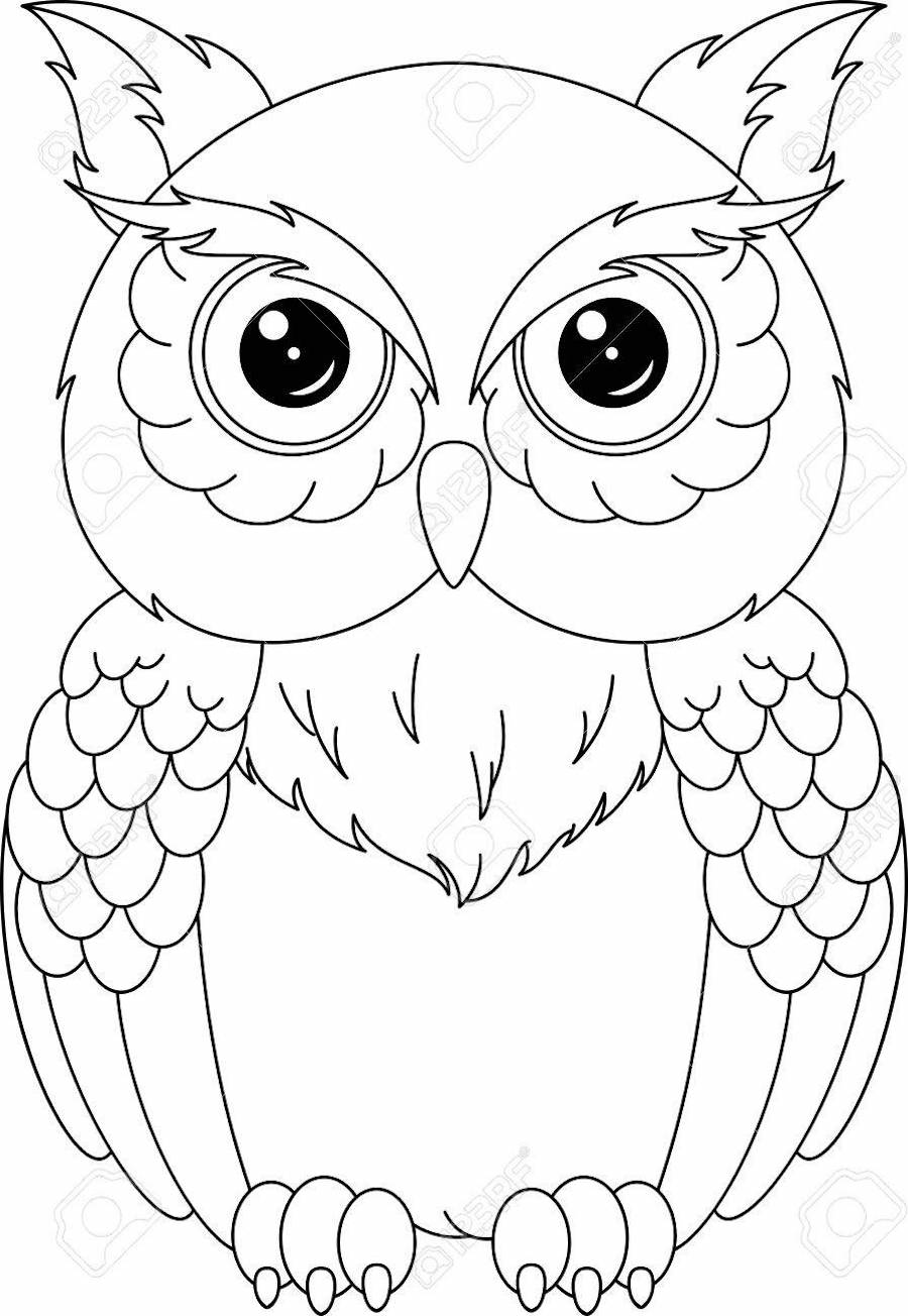 Owl Clipart Coloring Pages And Other Free Printable Design Themes