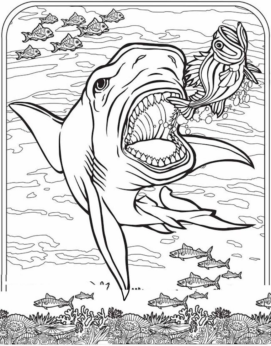 Shark Coloring Pages And Dozens More Top 10 Themed Coloring Challenges