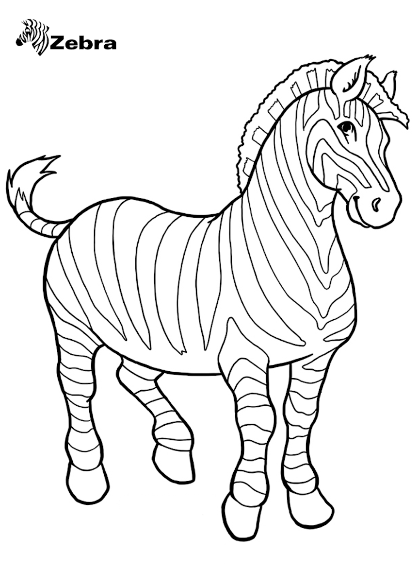 Zebra Clipart, Coloring Pages, And Other Free Printable ...
